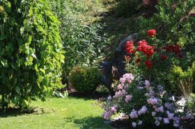 Vrt Jelke Sekere�